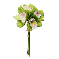 Real Touch Cymbidium Orchid Bouquet in Green 14in. Tall