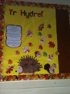 Yr Hydref Display, classroom display, class display, Autumn, Seasons, weather, leaves, yr hydref, welsh, Early Years (EYFS), KS1 & KS2 Primary Resource