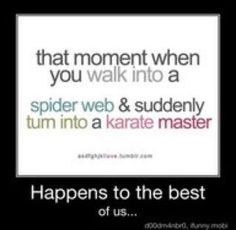 That moment when you walk into a spider web and suddenly become a karate master