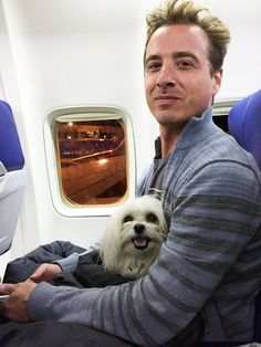Flying with Dogs - CITY DOG GOES TO THE ROCKIES