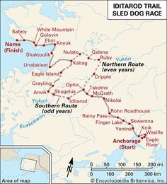 Alaska Dog, Alaska Travel, Alaska Trip, Alaska The Last Frontier, Water Movement, Teaching Geography, Kids Homework, Dog Facts, Too Cool For School