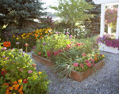 I have a picket fence garden. I love my picket fence garden. It screams cottage, and I love pretty much anythin. Building A Raised Garden, Raised Garden Beds, Raised Beds, Raised Gardens, Cut Flower Garden, Flower Farm, Picket Fence Garden, Raised Flower Beds, Garden Boxes