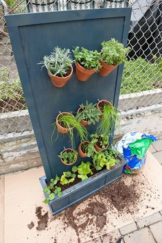 VerticalHerbGarden - this is another great idea for vertical growing that is also a beautiful yard decoration.  I could see growing flowers in this as well as herbs...