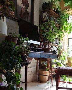 Jungle #workspacegoals + regram from Summer @srmanitou in the USA  An urban jungle indeed! This is the home office of Summer, an environmentalist + model  in NYC. Incredible to think think this plant paradise exists in the city!  Plus the vintage Ola desk is ✨ Thanks Summer for inspiring us with your unique jungle  of a workspace