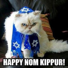 From the Jewish cats of the World: Happy No Eating Yom Kippur