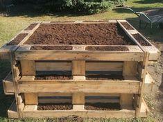 Magaságyás egyszerűen, gyorsan: raklapokból | Hobbikert Magazin Vegetable Garden Planning, Garden Planters, Rooftop, Planting Flowers, Pallet, Home Improvement, Home And Garden, House Design, Wood