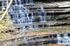 Madison Indiana is home to Clifty Falls State Park. #1 Perfect Place for an Adventurer like YOU!