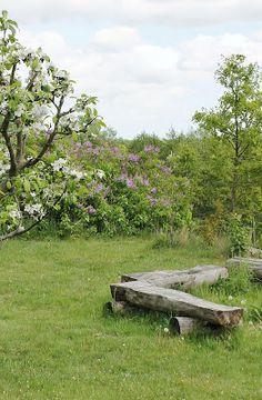 Jardin de rêve (bancs tout simples mais joliiiis)