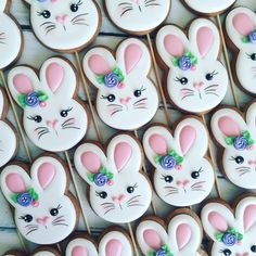 Нет описания фото. Crazy Cookies, Fancy Cookies, Iced Cookies, Cute Cookies, Holiday Cookies, Cupcake Cookies, Easter Cupcakes, Easter Cookies, Easter Biscuits