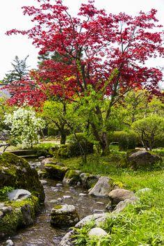 Kenroku-en, Kanazawa, Ishikawa, Japan