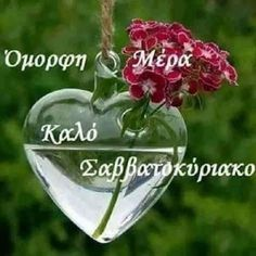 Good Morning, Christmas Bulbs, Holiday Decor, Beautiful, Buen Dia, Bonjour, Christmas Light Bulbs, Bom Dia, Buongiorno
