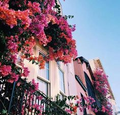 Bougainvillea and colourful houses! Let's travel the world. Pretty In Pink, Beautiful Flowers, Beautiful Places, Exotic Flowers, Colorful Flowers, Purple Flowers, Pretty Pictures, Planting Flowers, Growing Flowers