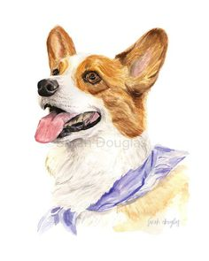 Watercolour corgi pet portrait by Sarah Douglas