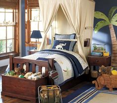 Awesome Gorgeous And Thrilling Boys Bedroom Decoration With Fabulous Canopy