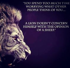 You spend too much time worrying what other people think of you.A lion doesn't concern himself with the opinion of a sheep. Jesus Reyes, Great Quotes, Inspirational Quotes, Motivational Quotes, Awesome Quotes, Quotable Quotes, Badass Quotes, Lion Quotes, Quotes Quotes