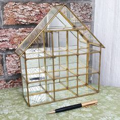 Vintage brass and glass curio display wall hanging shadow box - or terrarium!