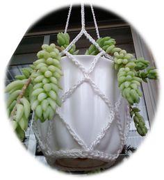 Crochet Ball, Crochet Home, Crochet Gifts, Cute Crochet, Knit Crochet, Ravelry Crochet, Crochet Plant Hanger, Macrame Plant Hangers, Beginner Crochet Projects