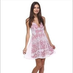 Tea n Cup Dresses & Skirts - Tea n Cup Red Lace Structured Dress