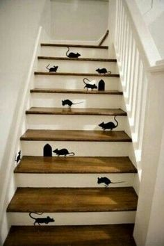 With cats inside the house. ...