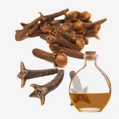 Receita de óleo de cravo-da-índia: para combater micose de unha e frieira | Cura…