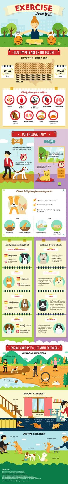 Credits to Amber Kingley for this amazing infographics on Pet Exercise and Activity.