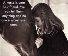 Love my horses