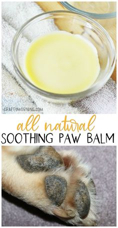 All Natural Soothing Paw Balm for Dogs- dog cracked paws in summer time. Dog paw pad balm to make. Recipe beeswax etc. All Natural Soothing Paw Balm for Dogs- dog cracked paws in summer time. Dog paw pad balm to make. Recipe beeswax etc. Dog Biscuit Recipes, Dog Food Recipes, Dog Paw Cream, Diy Pour Chien, Dog Paw Pads, Dry Dog Paws, Cracked Paws Dogs, Diy Pet, Homemade Dog Food