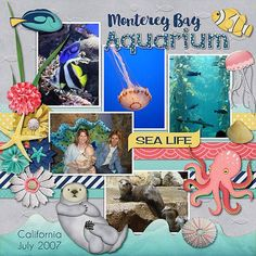 Below are layouts created with Magical Scraps Galore designs, for your inspiration: Disney Scrapbook Pages, Scrapbook Page Layouts, Travel Scrapbook, Scrapbook Kit, Monterey Bay Aquarium, Sea World, Layout Inspiration, Digital Scrapbooking, Scrapbooking Ideas