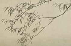 Google Image Result for http://www.artgraphica.net/images/how-to-draw-trees/i23-willow.jpg