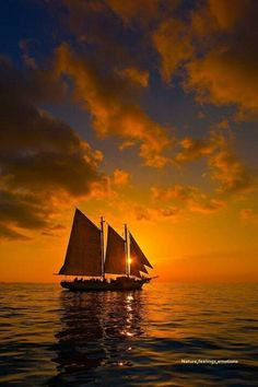Tall ship sailing into the sunset.