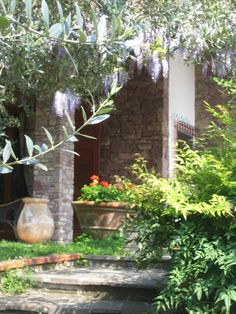 B&B Alle Mimose