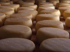 Cheeses | Flickr Centro de Portugal