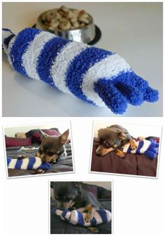 Jouet pour chien Crochet Hats, Pets, Diy, Crafts, Discussion, Hand Crafts, Plushies, Animales, Wrapping Papers
