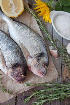 dorada fish рыба дорада