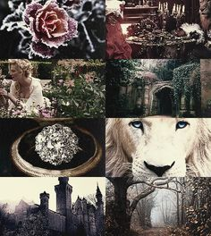 """the-fairestprincess: Fairy Tale Picspam→Beauty and the Beast """"Can you really love such an ugly creature as I am?"""" said the Beast faintly. """"Ah! Beauty, you only came just in time. I was dying because I thought you had forgotten your promise. But go back now and rest, I shall see you again by and by."""""""