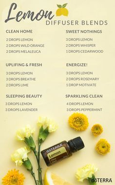 Everything you need to know about doTERRA Lemon Essential Oil - Some great diffuser blends to try with your Lemon Essential Oil! Everything you need to know about doTERRA Lemon Essential Oil Essential Oil Diffuser Blends, Doterra Essential Oils, Doterra Diffuser, Doterra Blends, Cedarwood Essential Oil Uses, Mixing Essential Oils, Relaxing Essential Oil Blends, Cedarwood Oil, Oil Mix