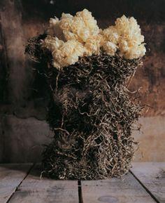 """Résultat de recherche d'images pour """"bloom li edelkoort"""""""