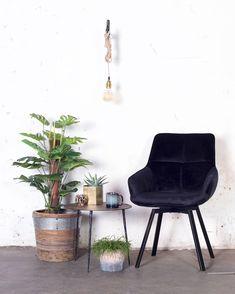 Zwarte velvet stoel Shannon heeft een chique en vintage uitstraling. Deze eetkamerstoel is perfect voor een vintage, urban of bohemian interieur! Nu voor 119,- Backyard Fort, Backyard For Kids, Backyard Party Lighting, Milwaukee Home, Large Pavers, Party Lights, Summer Diy, Image House, My Dream Home