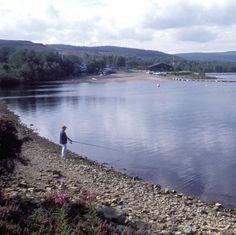 Fishing on lake shore