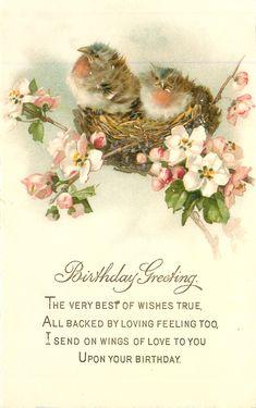 Birthday greeting two robin chicks on nest in wild-roses Happy Birthday Vintage, Happy Birthday Cards, Birthday Greeting Cards, Birthday Greetings, Card Birthday, Birthday Quotes, Vintage Greeting Cards, Vintage Ephemera, Vintage Paper