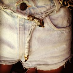 Vintage snake belt. I was at a concert when I saw a little girl wearing a snake belt just like this on her outfit. I loved the look!