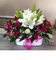 Kırmızı İnci, 74,90 TL + KDV, Ürün Kodu : NzA 227, Resim Üzerine Tıkla Hemen Adrese Gönder, tuzla çiçekçi, tuzla çiçek gönder, tuzla çiçek siparişi, tuzla çiçekçiler, tuzla çiçekçilik