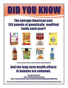 The average American eats 193 lbs of GM food each year