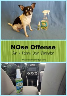 NOse Offense Air & Fabric Odor Eliminator product review. #odoreliminator #NOseOffense #sponsored