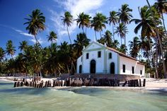 praia de carneiros - Pernambuco