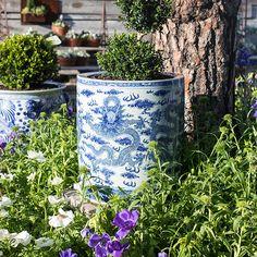 bw-2 Garden Planters, Planter Pots, Rogers Gardens, White Gardens, White Decor, Garden Styles, White Porcelain, Garden Inspiration, White Flowers