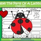 $ - Ladybug Labels. Have your students cut and glue each word label or have your students writing in the labeling words.  Enjoy!  Regina Davis aka Queen Chaos at Fairy Tales and Fiction By 2.