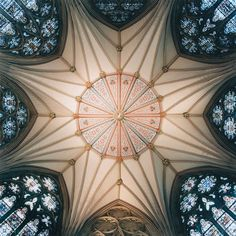 David Stephenson - Chapter House, York Minster, York