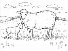 sheep coloring pages for preschool free coloring pages for kids