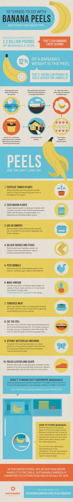 10 Crazy Things To Do With Banana Peels Besides Tripping A Cartoon Character - Great infographic for helping to reduce food waste! Banana Peel Uses, Banana Peels, Estilo Fitness, Food Facts, Things To Know, Crazy Things, Awesome Things, Sustainable Living, Good To Know